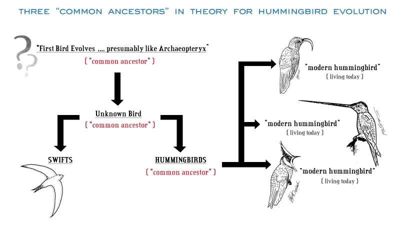CommonAncestorGraph1
