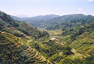 The Banaue Rice Terraces in Luzon Island, Philippines