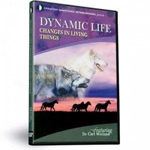 30-9-520-Dynamic-Life-2015-2-15-23.53.28.353-500x500