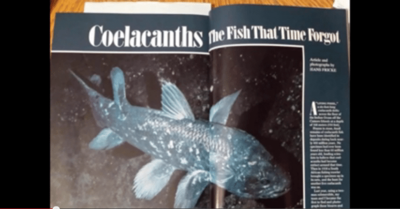 Coelacanths magazine picture