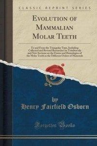 Evolution of Mammalian Molar Teeth by Henry Fairfield Osborn