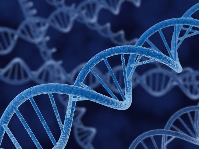 DNA 3D rendering