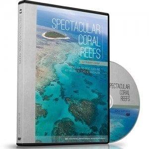 Spectacular-Coral-Reefs-300x300 dvd robert carter