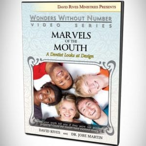 drm-martin-mouth