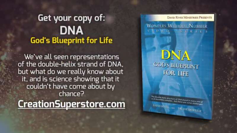 Wwn dna gods blueprint for life video trailer the creation club wwn dna gods blueprint for life video trailer the creation club a place for biblical creationists to share and learn malvernweather