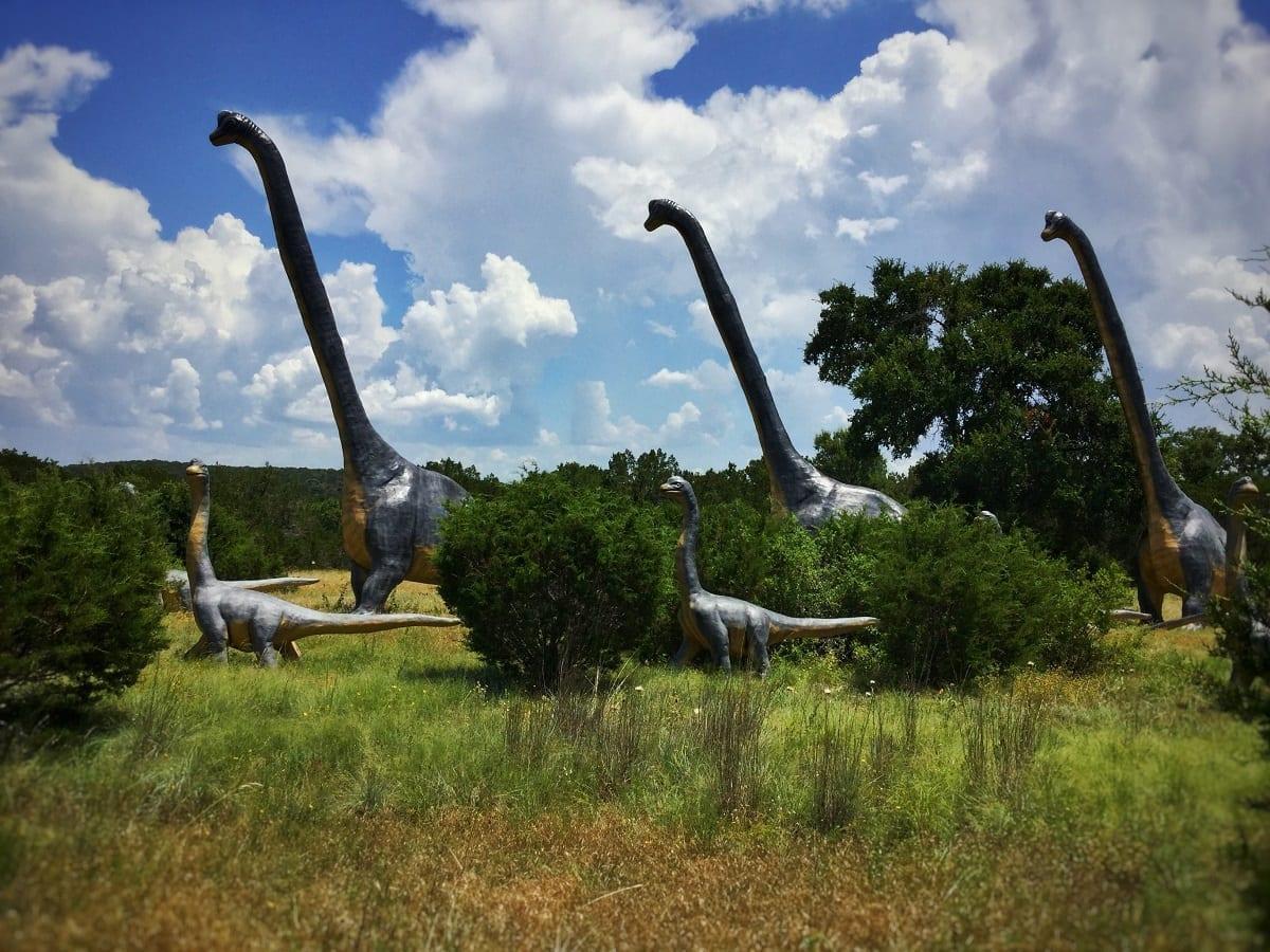 Dinosaur - long-necked sauropod reconstruction. Photo copyright David Mikkelson 2017