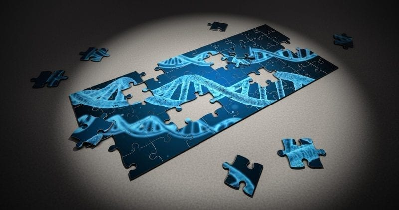 DNA pictured on an incomplete jigsaw puzzle
