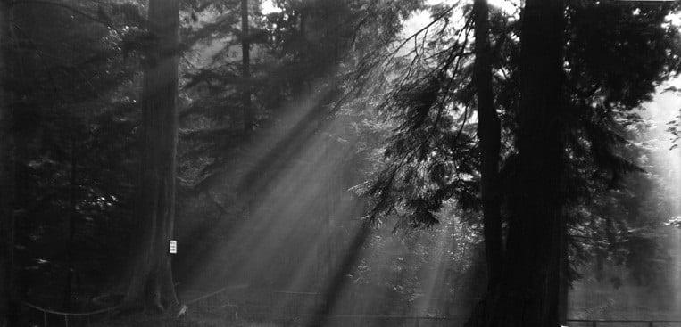 Crepuscular Rays vintage photo
