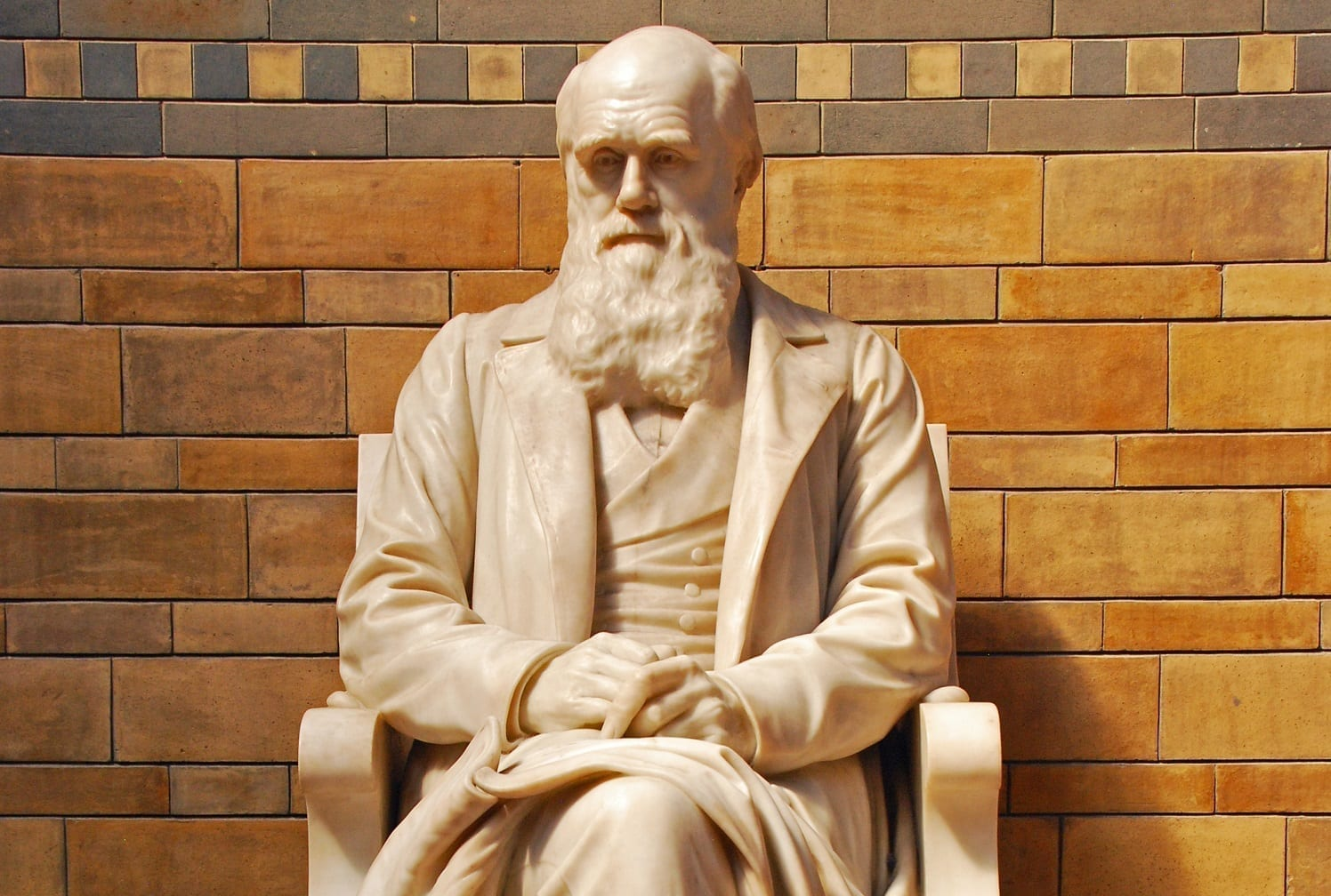 Darwin Statue: © Stbernardstudio | Dreamstime.com File ID: 34106562