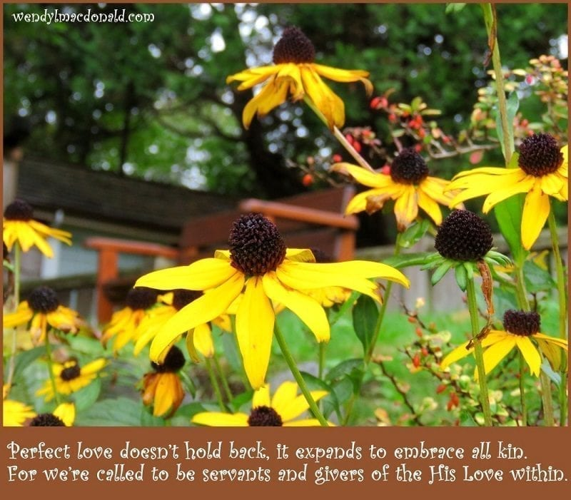 "Photo credit: Wendy MacDonald ""Perfect love doesn't hold back, it expands to embrace all kin. For we're called to be servants and givers of the His Love within."""