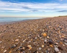 Italian beach littered with seashells: ID 123673602 © Natalia Sokko | Dreamstime.com