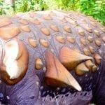 Nodosaur back spines closeup: ID 133335116 © Geert Van Keymolen | Dreamstime.com
