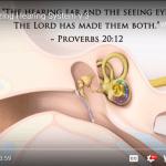 Genesis Apologetics Hearing YouTube cover