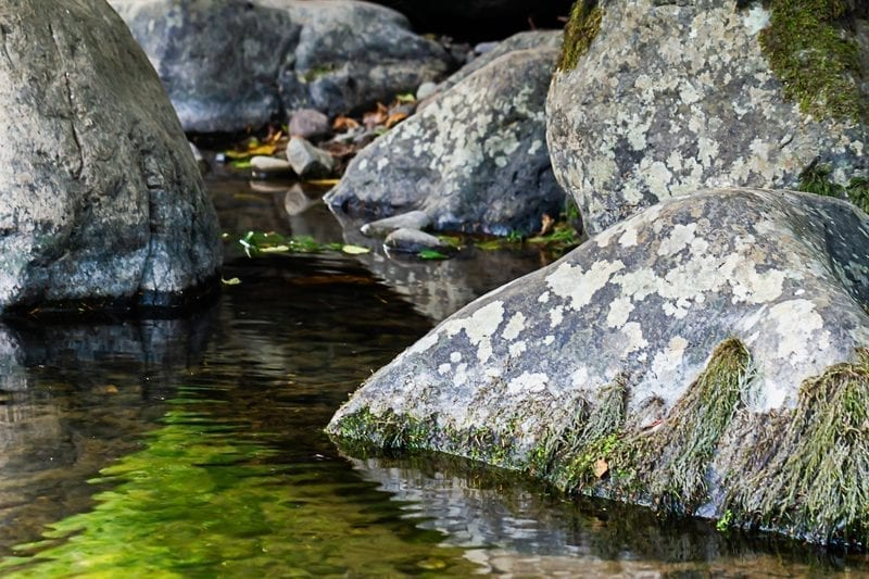 Quiet stream with large boulders, Washington State: ID 136150418 © Taya Johnston | Dreamstime.com