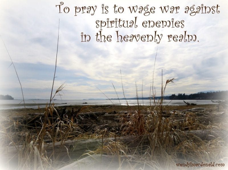 """Lakeside dried reeds, """"To pray is to wage war against spiritual enemies in the heavenly realm, Photo credit: Wendy MacDonald"""