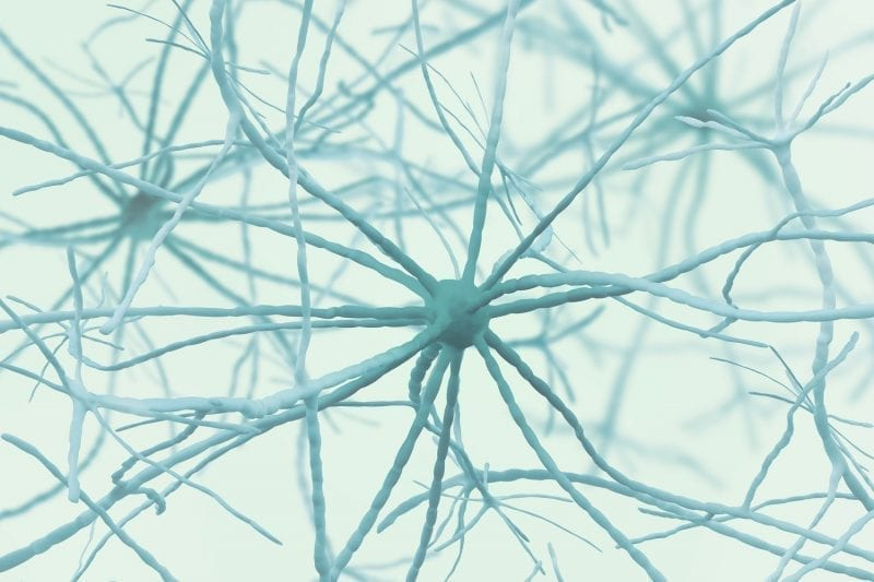 Neurons 3D image: ID 136686190 © Siarhei Yurchanka   Dreamstime.com