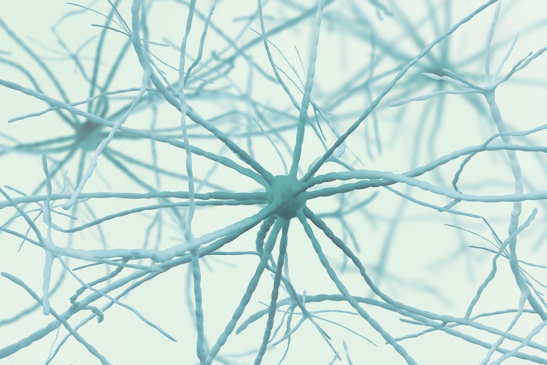 Neurons 3D image: ID 136686190 © Siarhei Yurchanka | Dreamstime.com