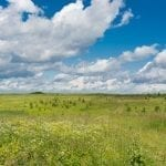 Russian prairie under blue skies, photo credit: pxhere