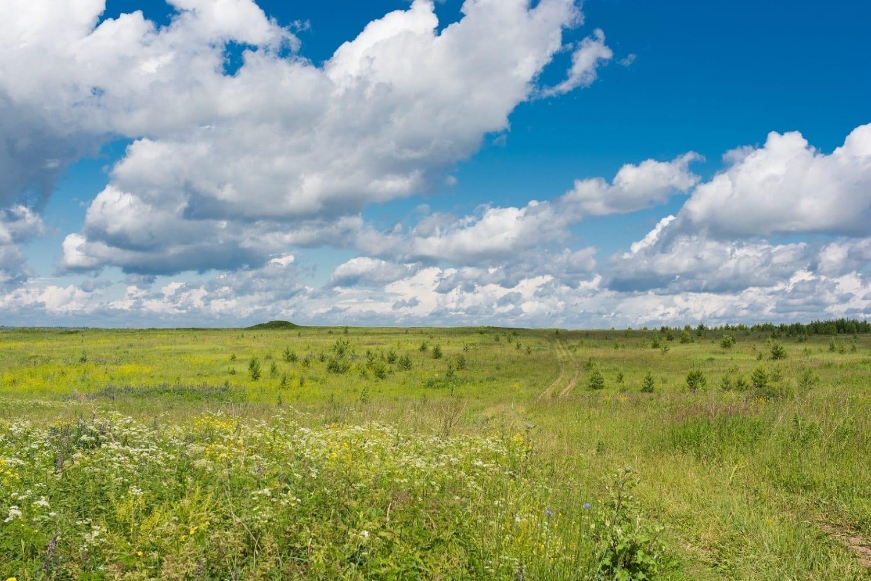 Russian prairie under blue skies, photo credit: pxhere