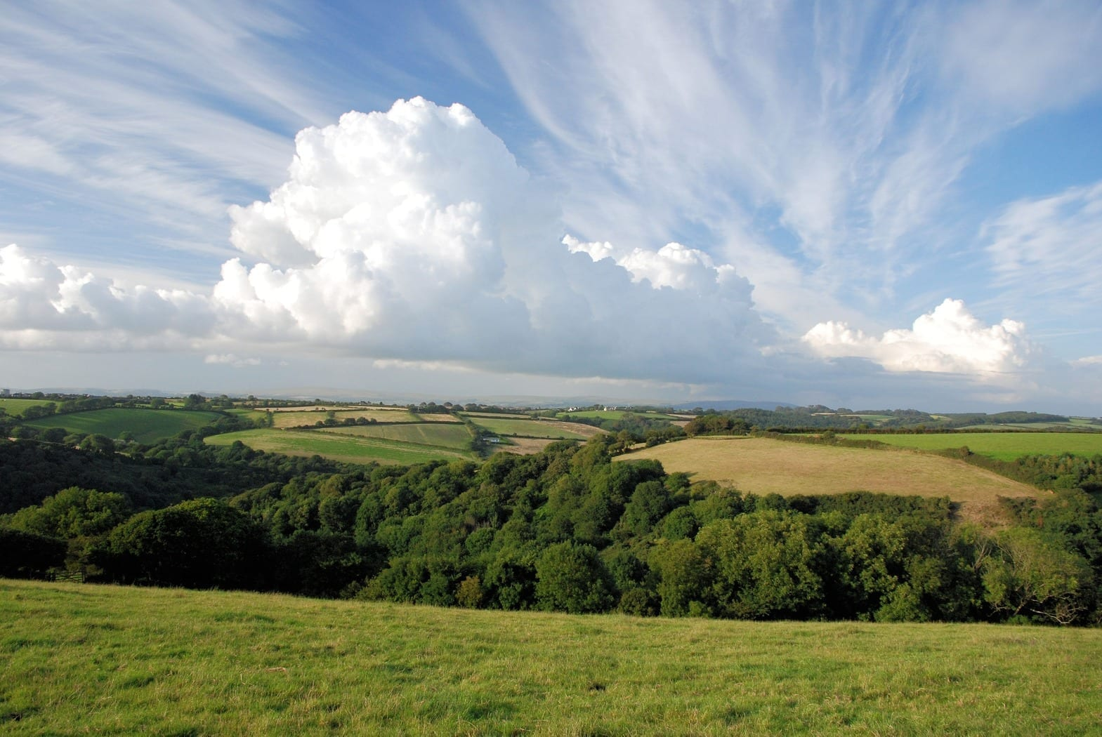 Farmland with woods and puffy clouds above, photo credit: pxhere