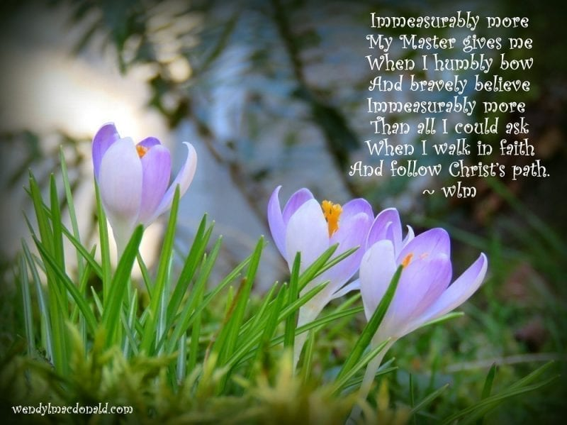 Crocuses with the above poem, photo credit: Wend MacDonald