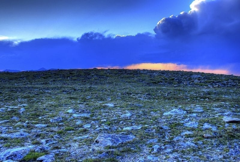 Tundra view with lichen covered rocks at sunset