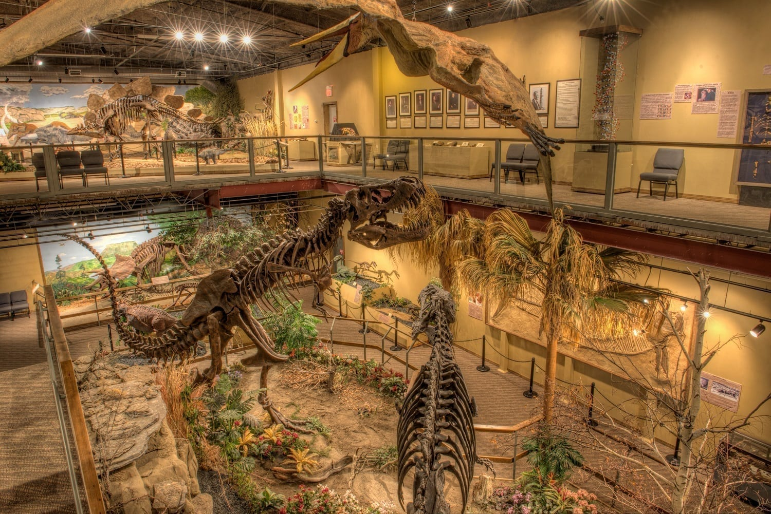 Glendive Dinosaur Museum main hall, photo credit: Tommy Lohman