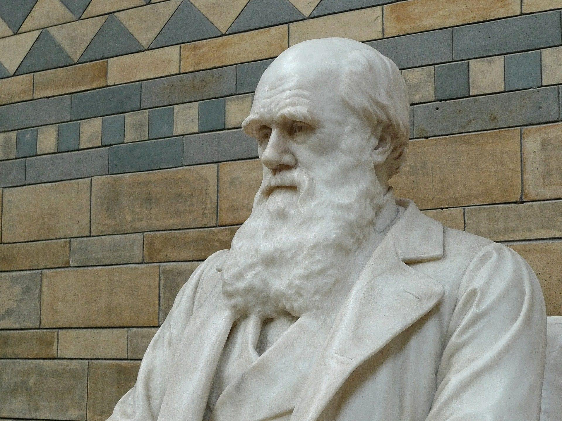 Statue of Darwin