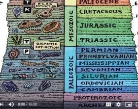 Fossil-Record-Genesis-Apologetics-YouTube-still