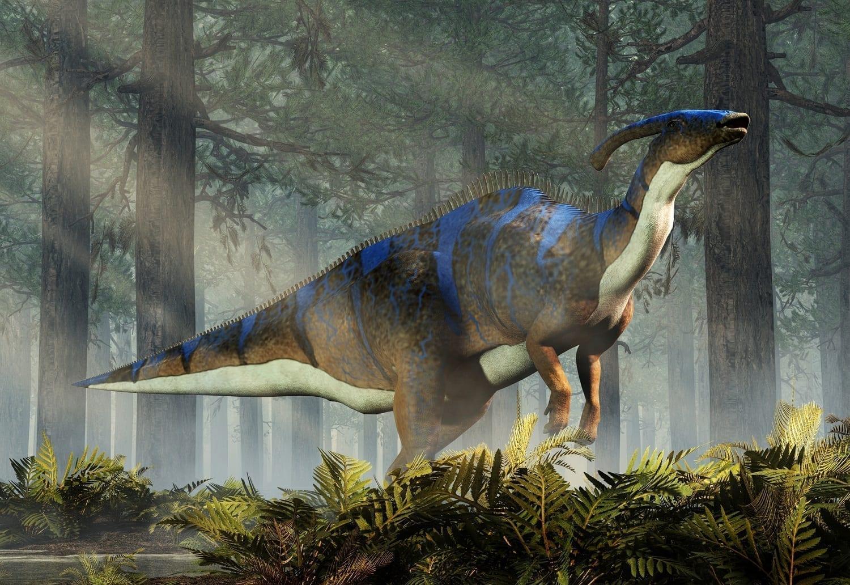 Parasaurolophus member of the hadrosaur family CG rendering: ID 135128430 © Daniel Eskridge | Dreamstime.com