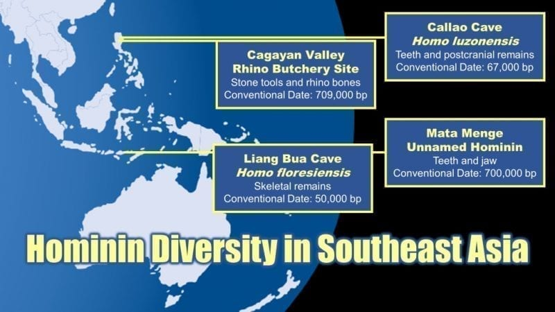 Map of the Indo-Pacific showing locations of early human artefacts