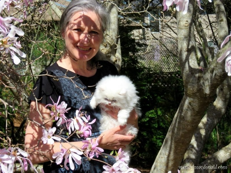 Wendy MacDonald under a blossoming tree with white kitten