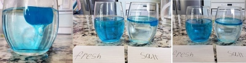 Ice cube experiment with blue dye in glasses