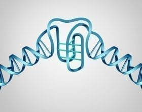"DNA structure showing ""I-motif"" addition graphic: ID 115590529 © Skypixel 