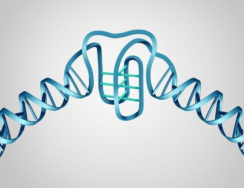 """DNA structure showing """"I-motif"""" addition graphic: ID 115590529 © Skypixel 
