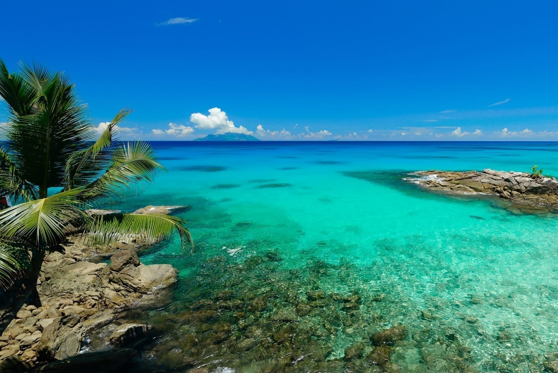 Seychelles reef near Aldabra: ID 41400344 © Marcel Rene Grossmann | Dreamstime.com