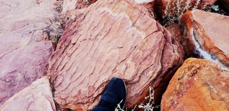 Sandstone boulder with ripple marks, Kellys Knob, photo credit: Tas Walker