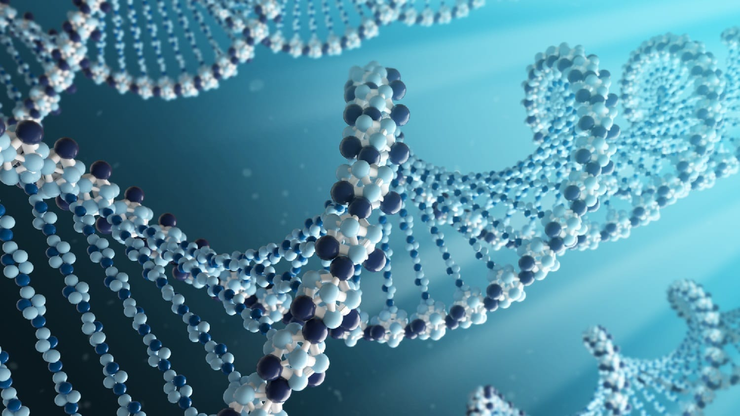 DNA molecule strands model: photo credit Dreamstime ID: 40200857