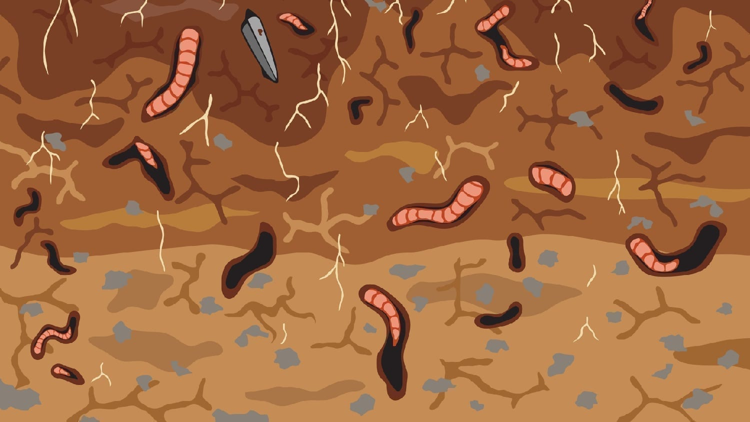 Dirt with roots and worm burrows: Illustration 16312429 © Robert Adrian Hillman | Dreamstime.com