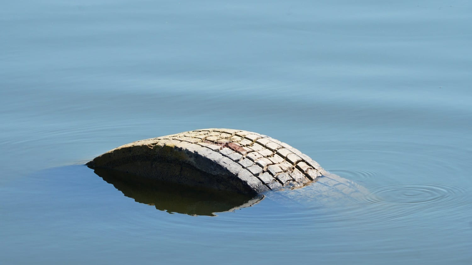 Abandoned tire with edge showing above a lake's surface: Photo 115611969 © Gintas7333 | Dreamstime.com