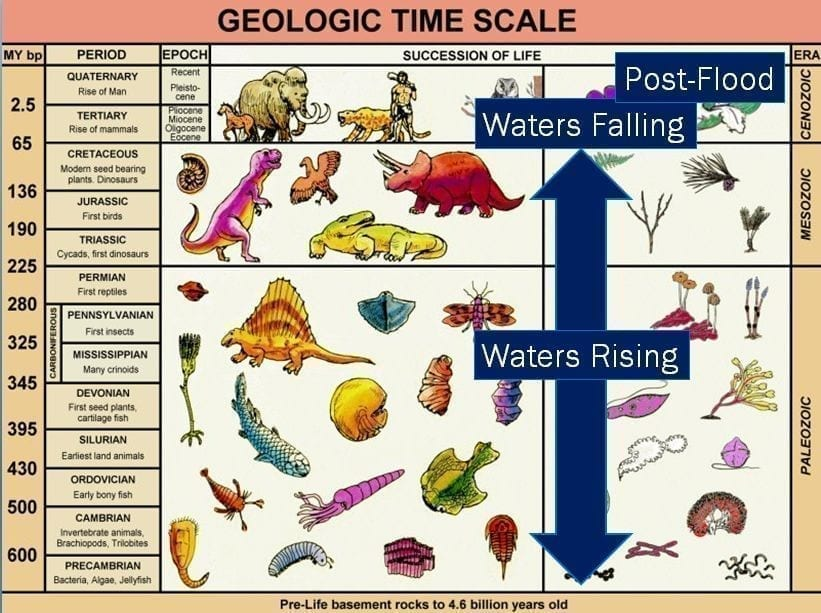 Secular geologic timescale with Noah's flood bar superimposed