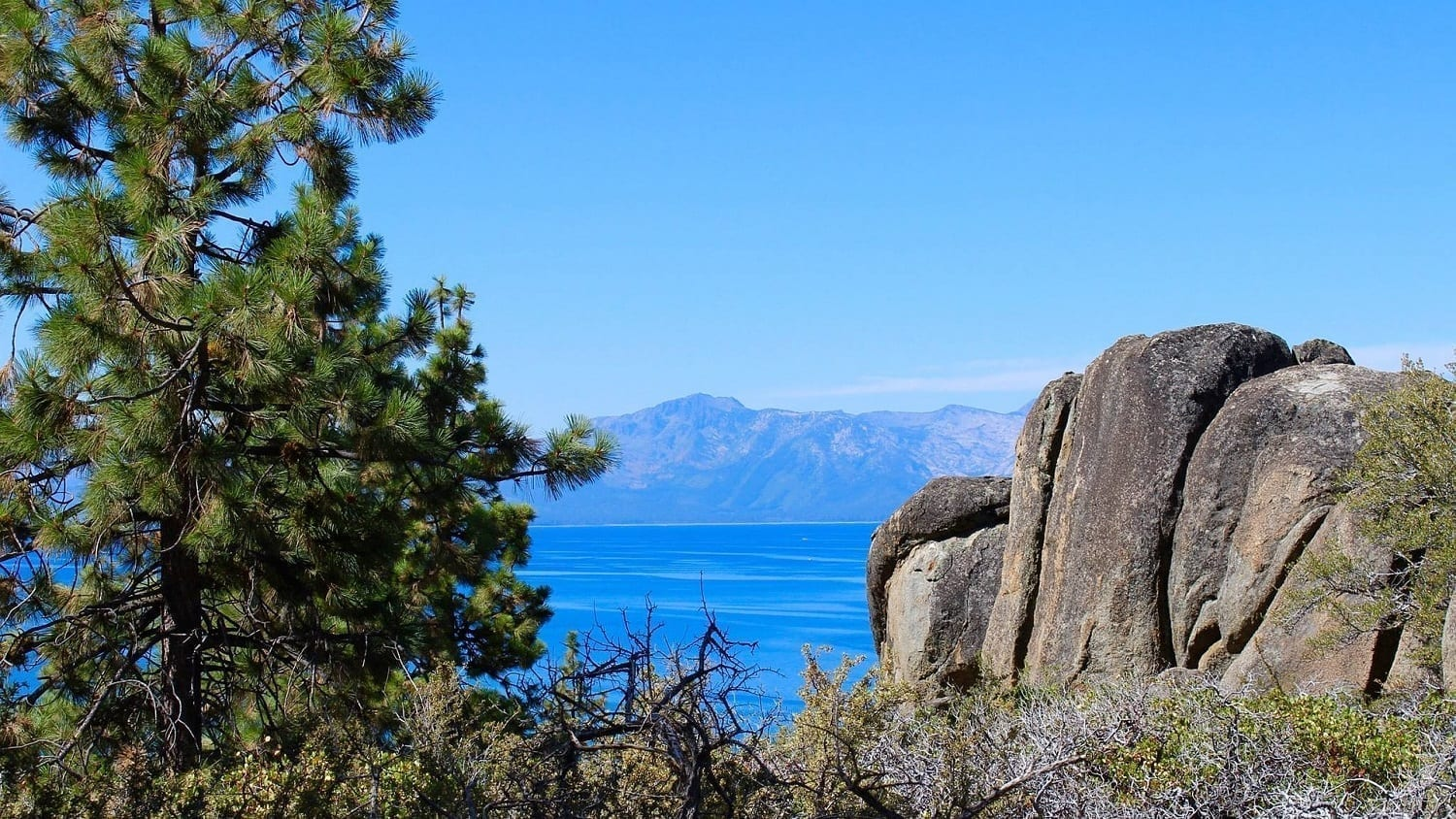 Lake Tahoe with Ponderosa Pine and rocks, photo credit: Pixabay: Tim Fagan