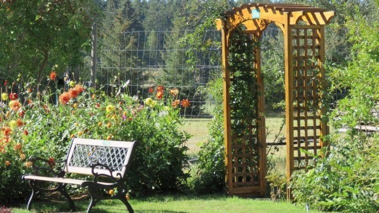 Garden with deer fencing in the background, photo credit: Wendy MacDonald