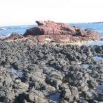 Basalt at Kitty Miller Bay, Phillip Island, photo credit: Tas Walker