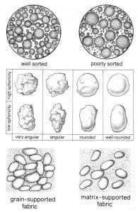 Sand grain varieties drawings, photo credit Tas Walker