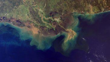 Mississippi delta with sedimentation, photo credit: NASA