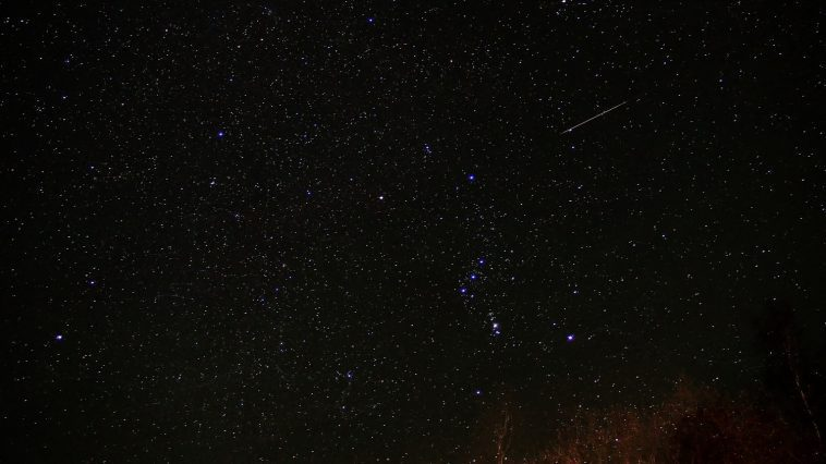 Night sky with Orion constellation visible and a meteor: Photo 49231187 © Vitalij Kopa | Dreamstime.com