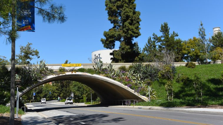 University of California, Irvine, bridge: Photo 179573955 © Steven Cukrov | Dreamstime.com
