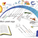 Does the Bible allow for the long timeline of evolution? Graphic built on public domain illustrations